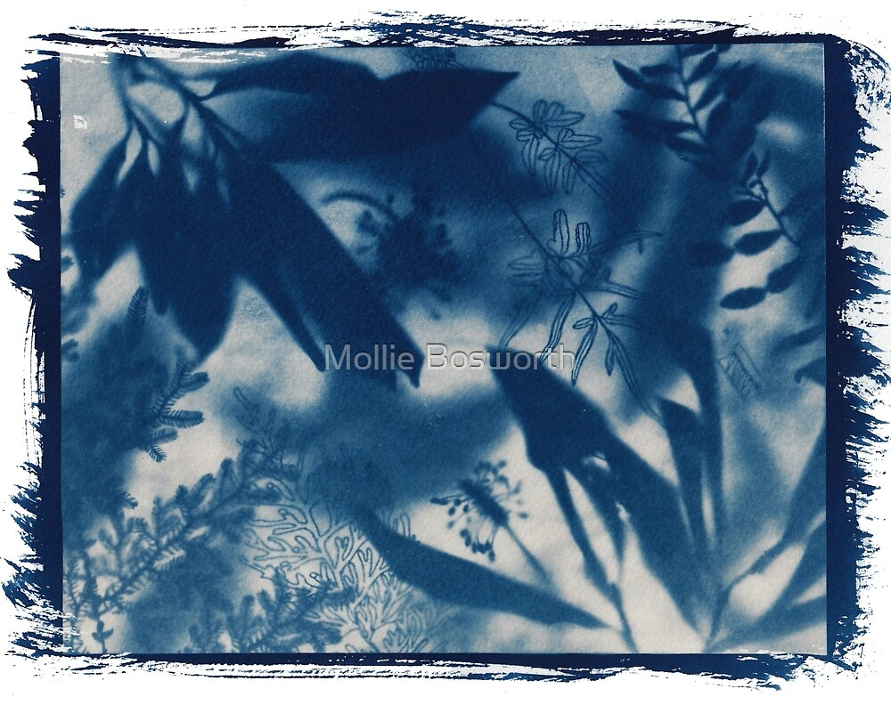Moonlight Garden 3 by Mollie Bosworth