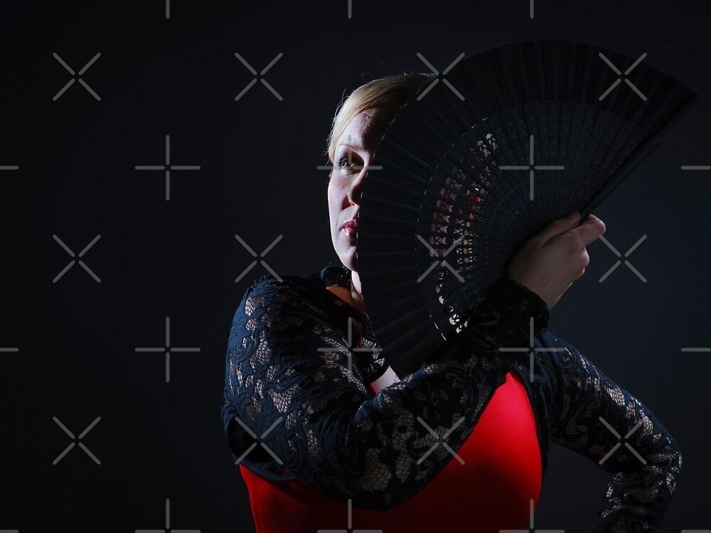 Flamenco by ansaharju