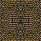 Illusion by Robin Monroe