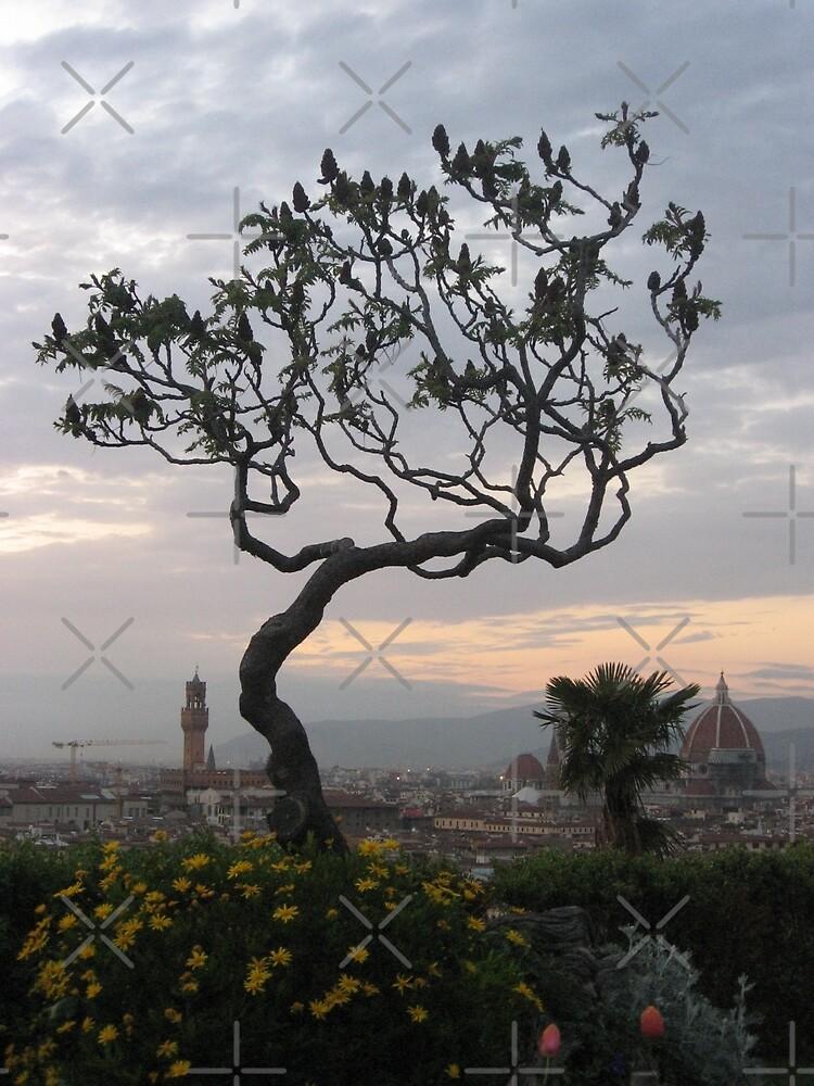 Firenze from Piazzale Michelangelo by Kymbo