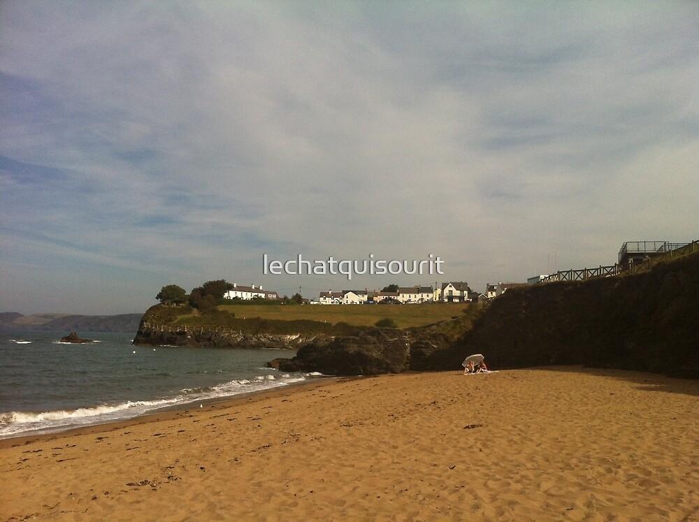 Sunshine in Ceredigion by lechatquisourit
