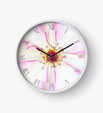 Closeup of pink flower with pink stamens Clock
