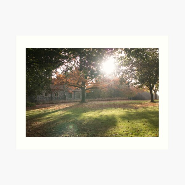 Sunlit autumn scene Art Print