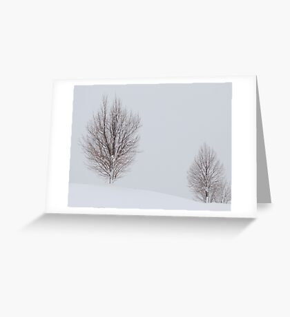 Bare Winter Tree Greeting Card