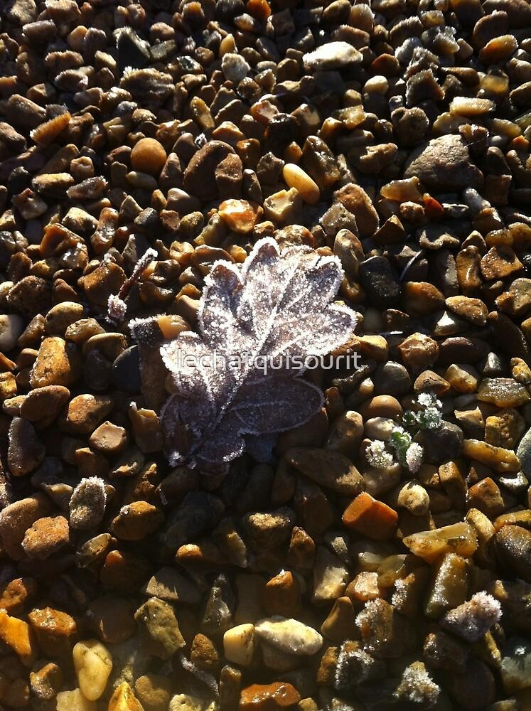 Frozen Oak Leaf by lechatquisourit