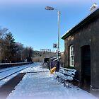 Eggesford Station in Winter by Charmiene Maxwell-Batten