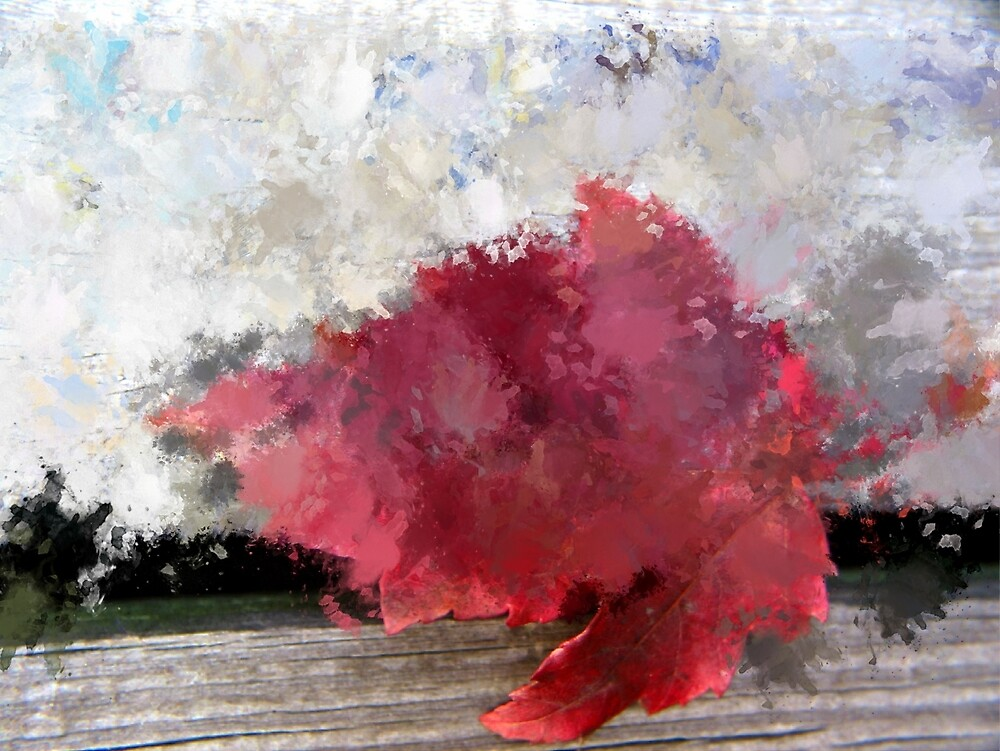 Abstract Bright Red Leaf by TerryIKON