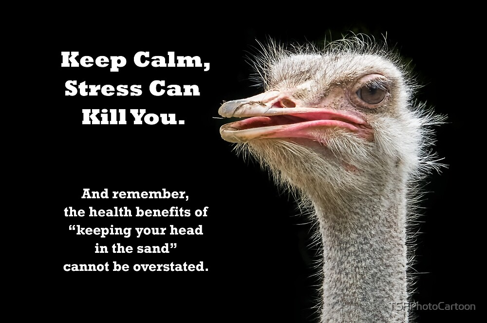 Keep Calm Ostrich by TSFPhotoCartoon