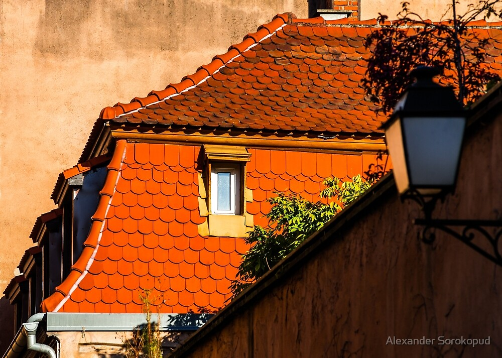 Beautiful form of old roofs, Strasbourg, sunny winter day, France by Alexander Sorokopud