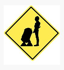 Droid Crossing Photographic Print