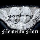 Memento Mori by Amanda Norman