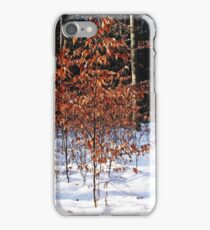 The Beeches iPhone Case/Skin