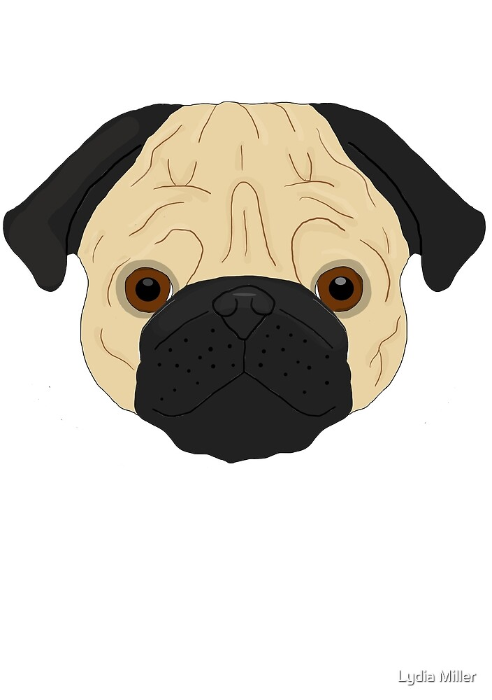 Pug  by Lydia Miller