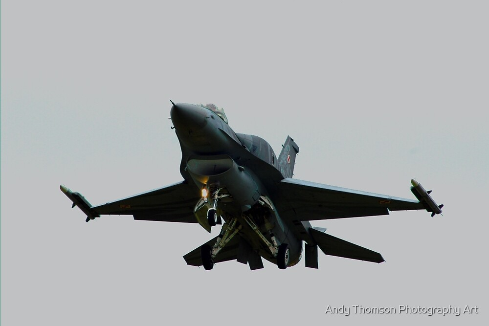 Falcon Approach by Andy Thomson Photography Art