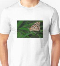 Common Buckeye  (Junonia coenia) butterfly T-Shirt