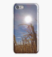 Sun Shining Down on the Corn Fields iPhone Case/Skin