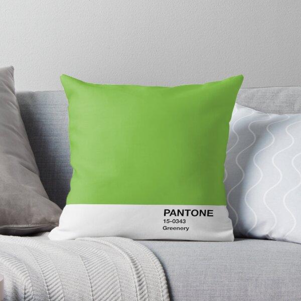 Color del año de 2017 Pantone - El verde Cojín