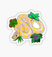 Banana Ball Python Sticker