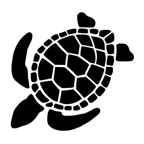 Tortoise by Arts2417