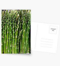 Asparagus Postcards