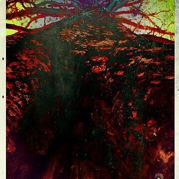 New Mexico Juniper  by Ahjo