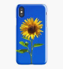 Sunflower, iphone case iPhone Case/Skin