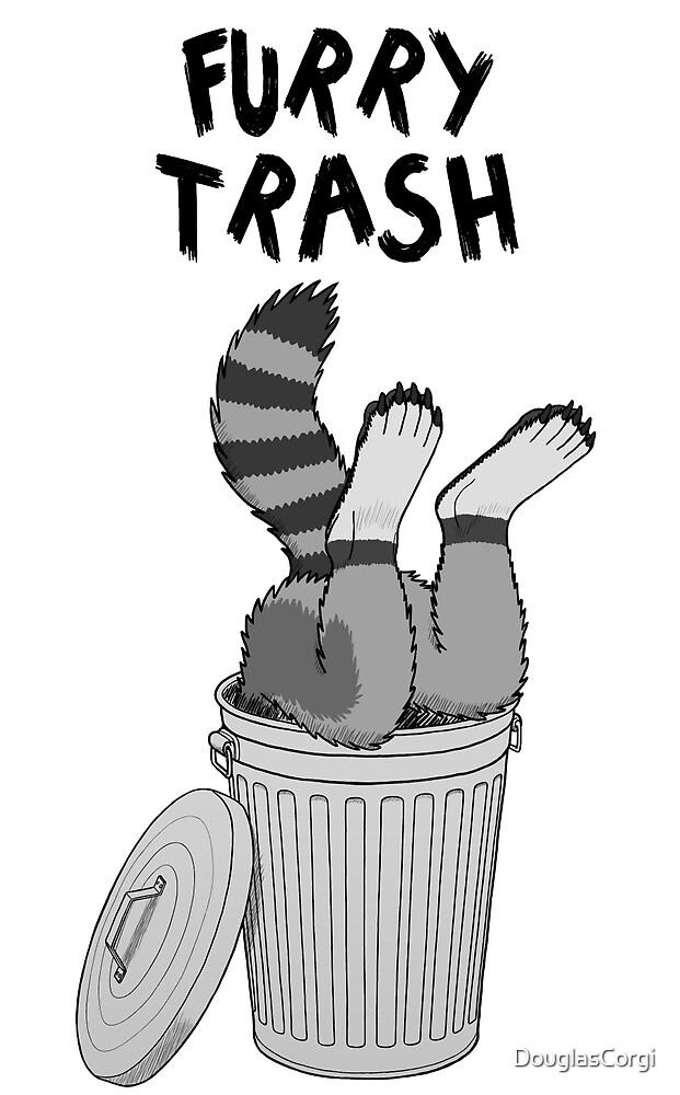 Furry Trash - Gray Raccoon by DouglasCorgi
