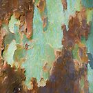 The Tree Bark Collection # 5 by Philip Johnson