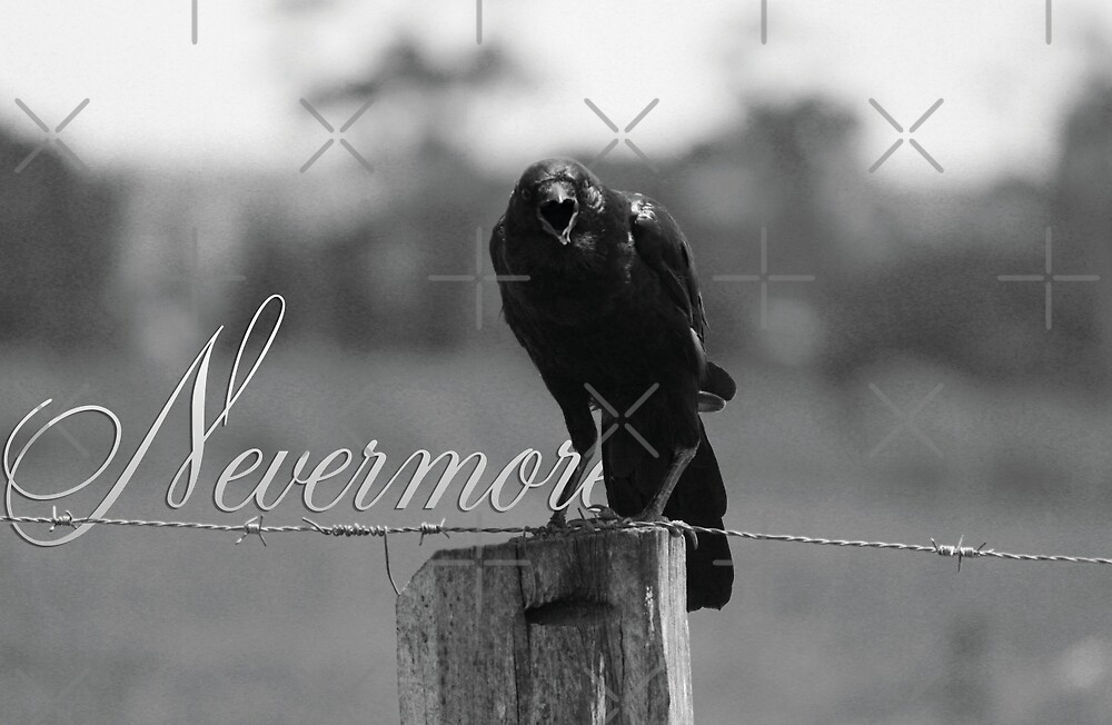 Nevermore - Black and White by Tim East