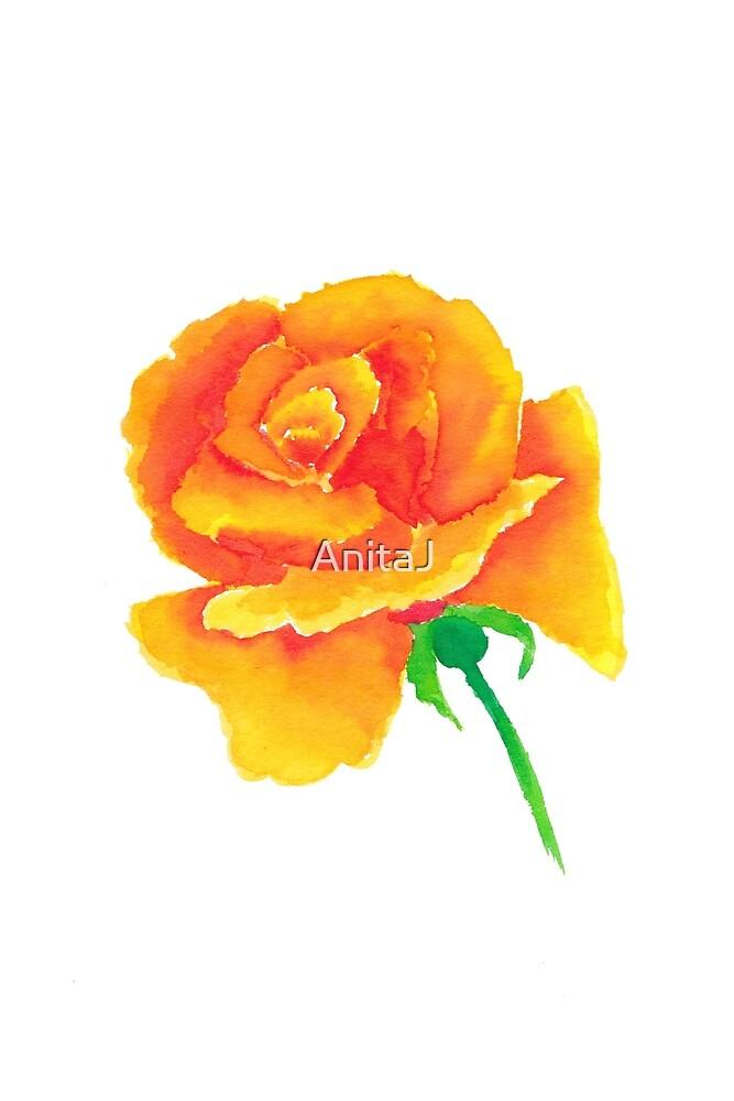 Watercolour Rose by AnitaJ