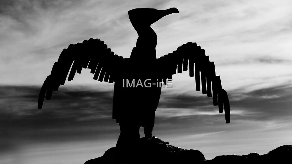 Bird by IMAG-inE