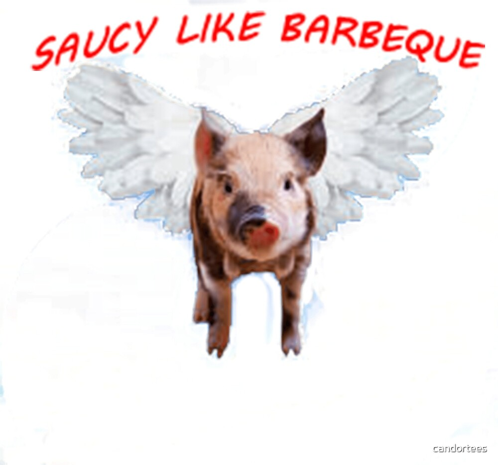 SAUCY LIKE BARBEQUE by candortees