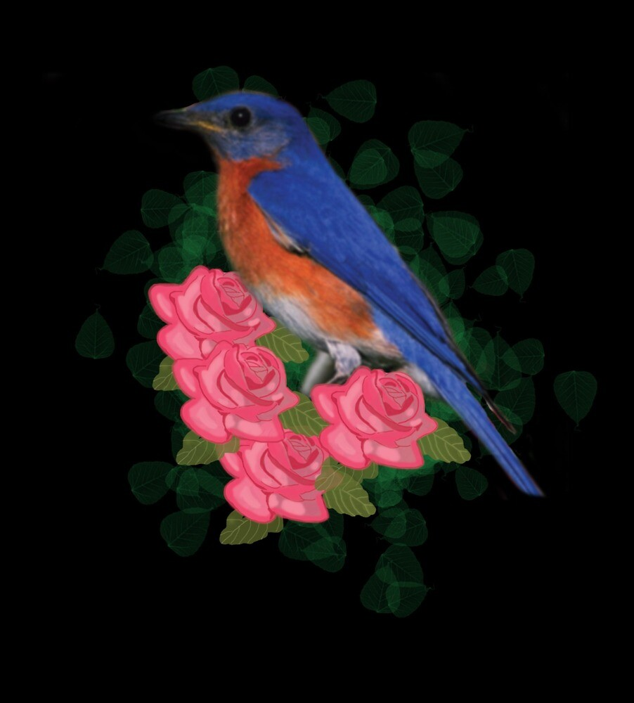 Bird and Roses by camilarossi