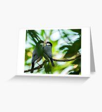 Java sparrows mating ritual Greeting Card