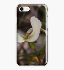 Cow Kicks (Stylidium schoeoides) iPhone Case/Skin