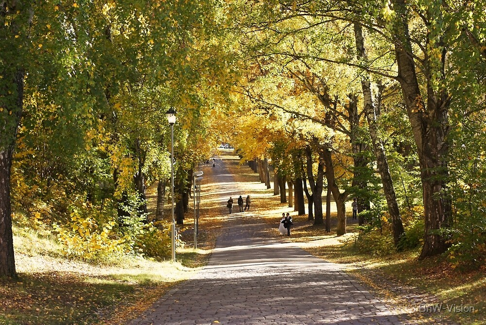 Uppsala Castle Park by BnW-Vision