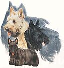 Scottish Terrier w/Ghost by BarbBarcikKeith