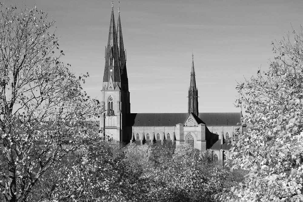 Uppsala Cathedral, Black and White by BnW-Vision