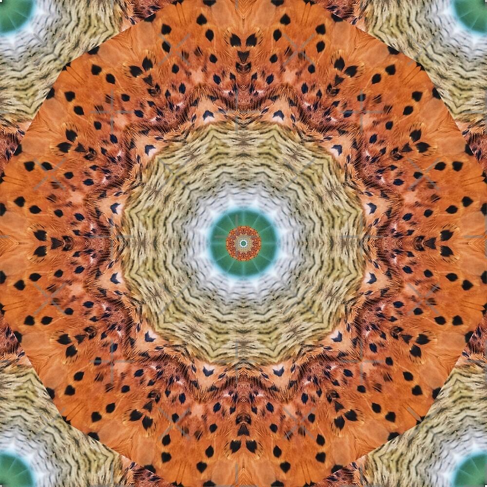 Feather Mandala 12 by tereanahata