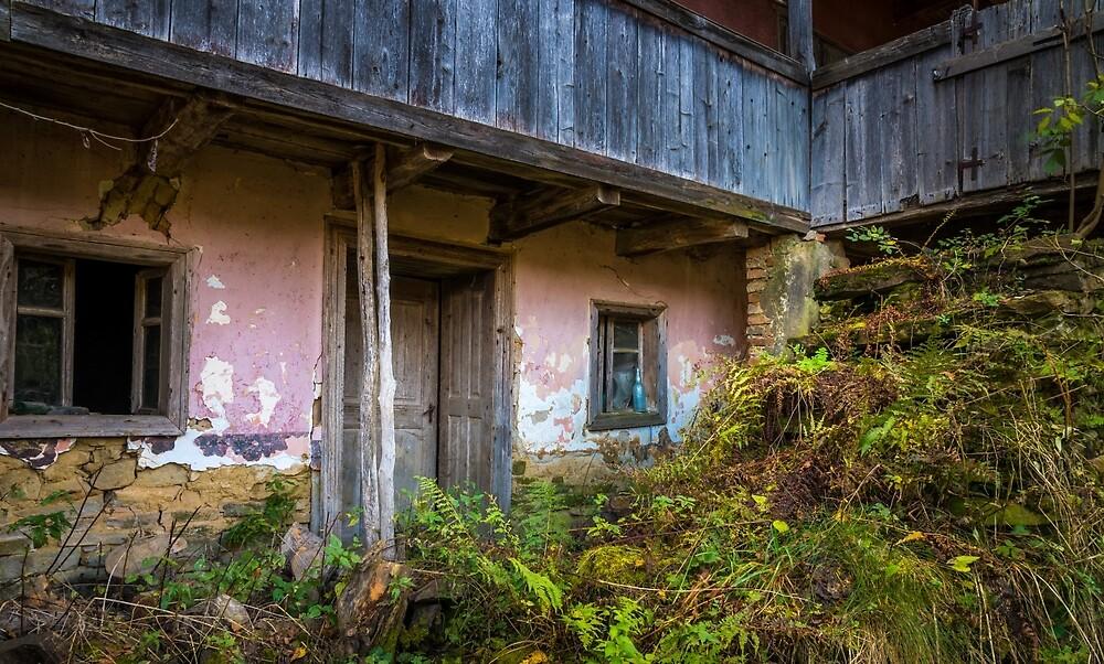 Rural scene by PeterCseke