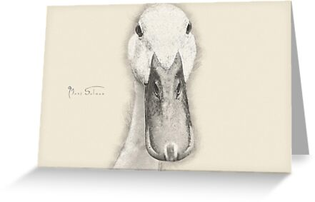 Duckface by Mark Salmon