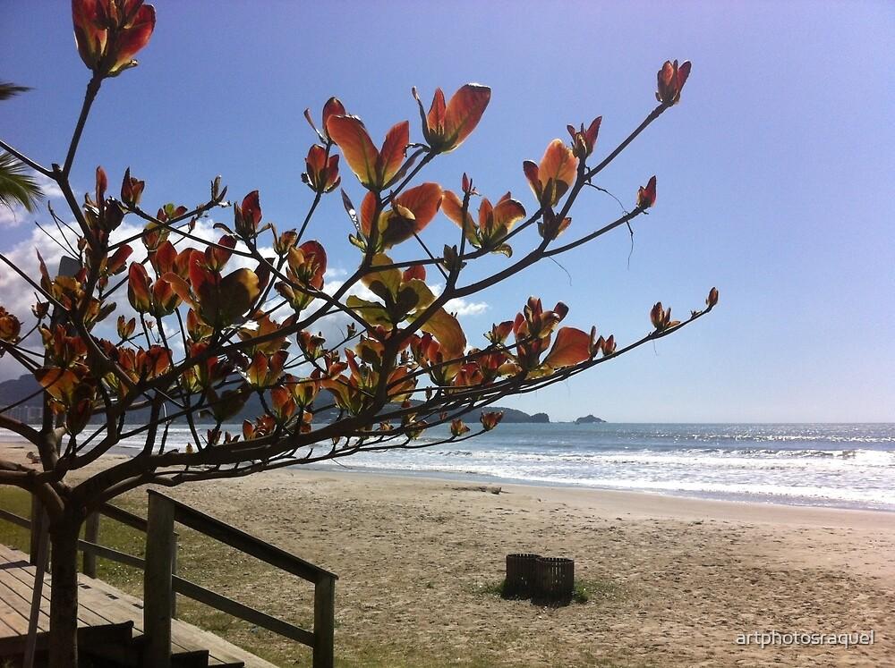 Peaceful beach by artphotosraquel