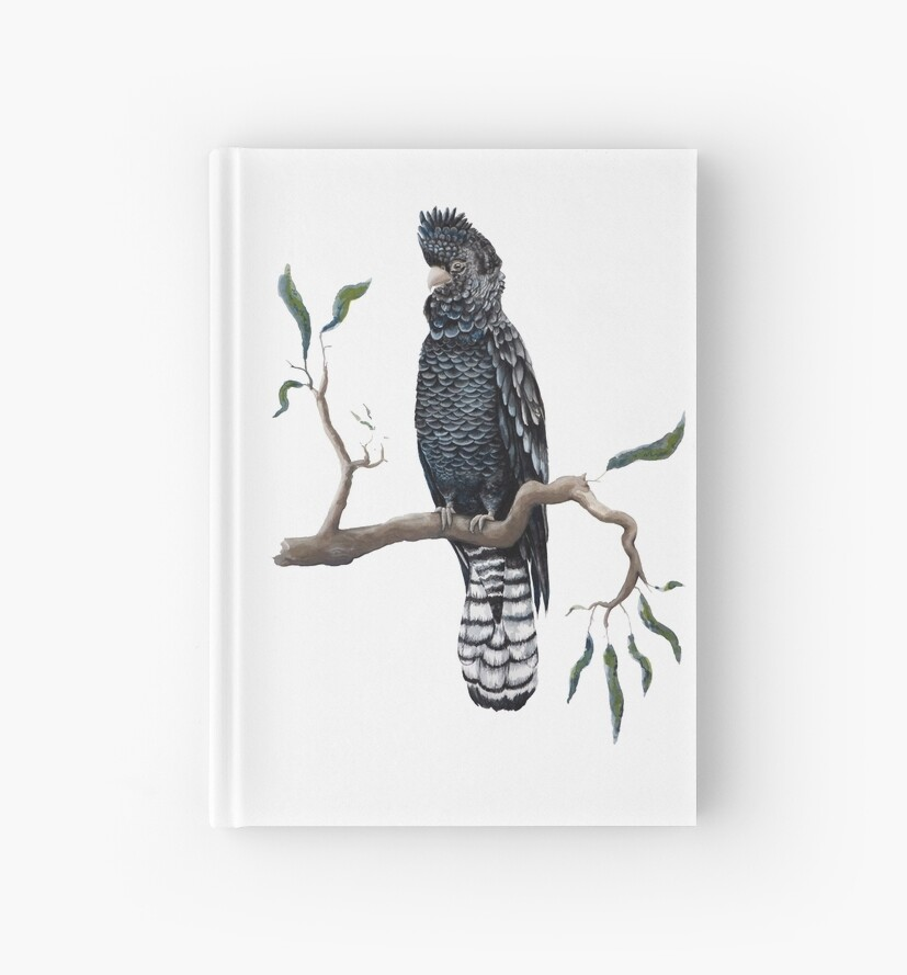 Australian Black Cockatoo by paulaformosaart