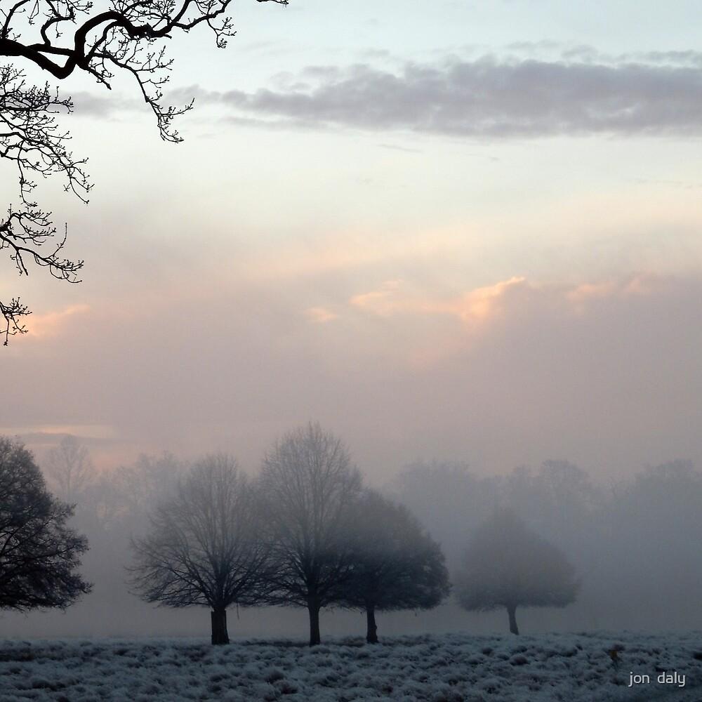 Frosty Richmond Park by jon  daly