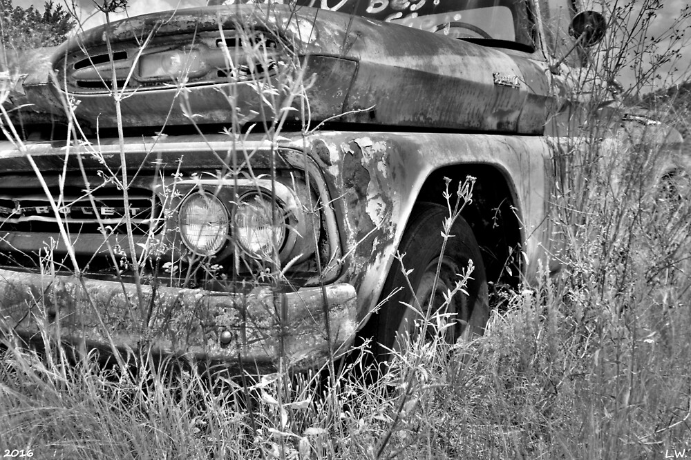 1961 Chevrolet Apache 10 Black And White 4 by LisaWootenPhoto