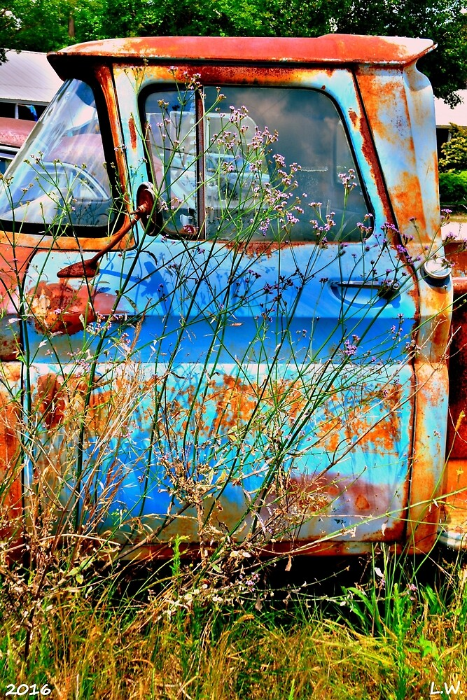 Blue And Rust by LisaWootenPhoto