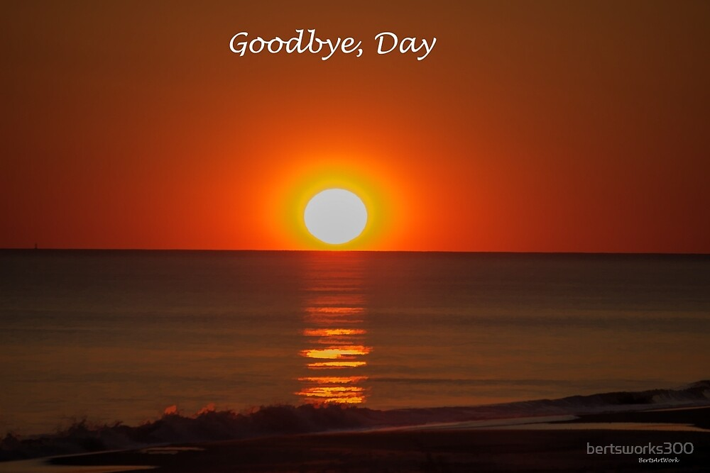 Goodbye, Day by bertsworks300