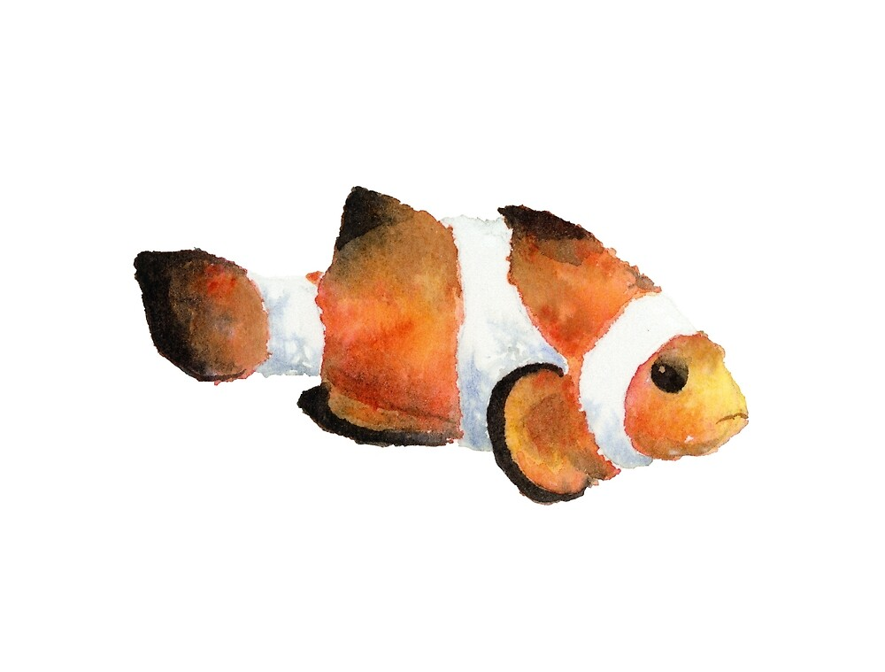 Grumpy Watercolor Clownfish Met while SCUBA Diving by purple-mango