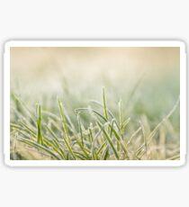frost on grass Sticker
