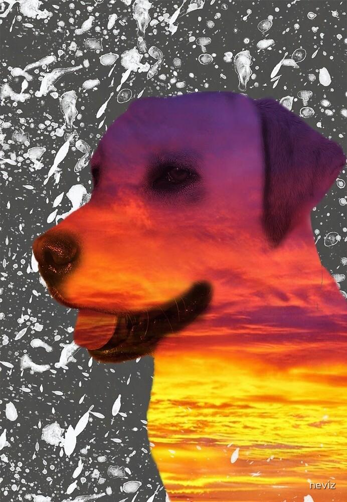 Canine Sunset - Dog Design by neviz